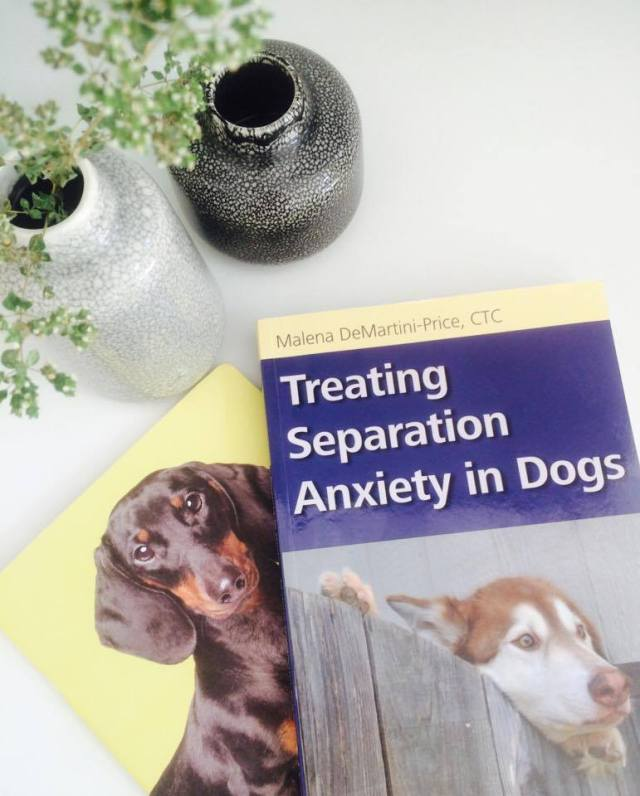 Book Treatin separation anxiety in dogs